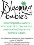 Blooming Babies Logo pic (2)